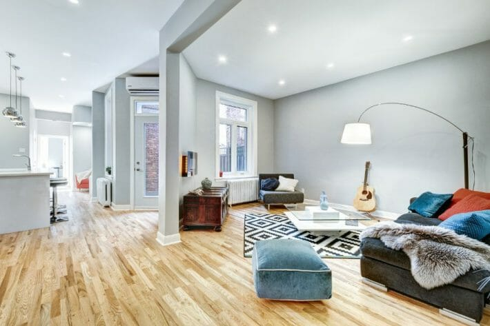 airbnb fort collins; a gray toned living room with hardwood floors and bright lighting