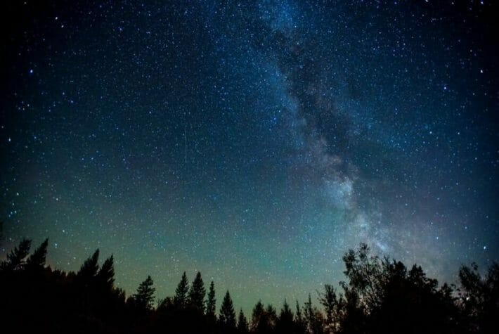 Darkened tree tops below a blue-green sky illuminated with stars and the milky way